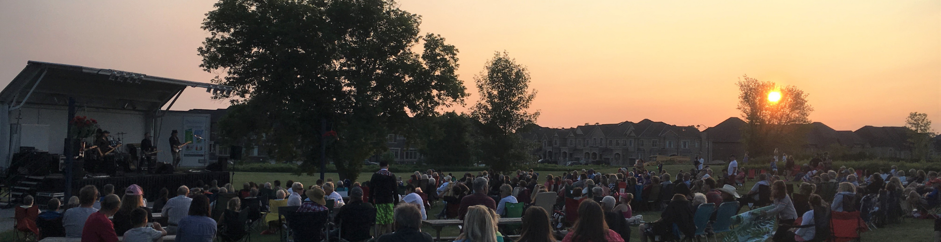 People at an outdoor concert