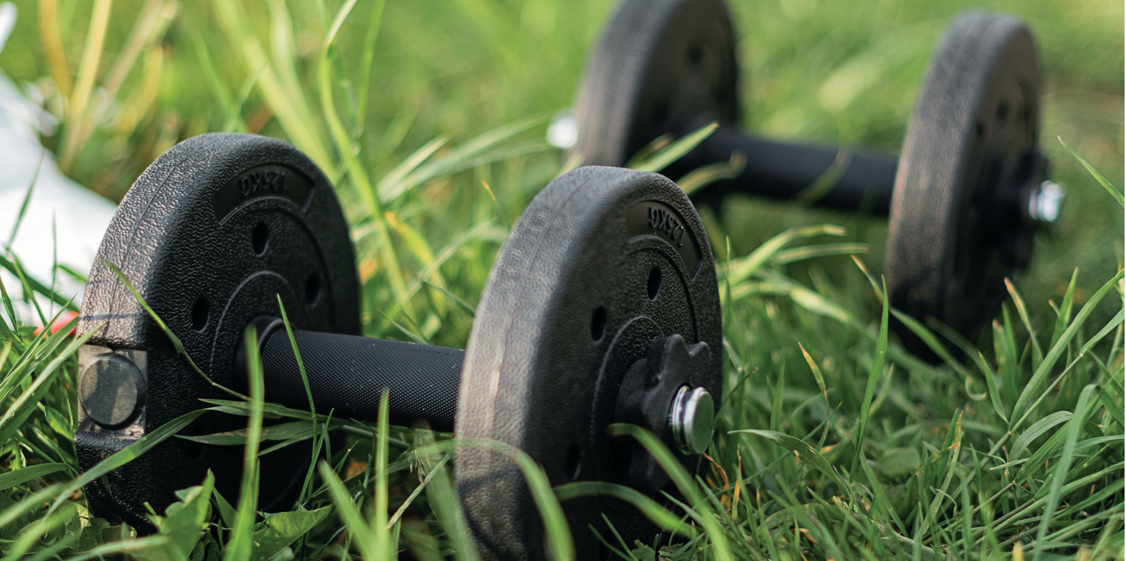 Hand weights sitting on the ground