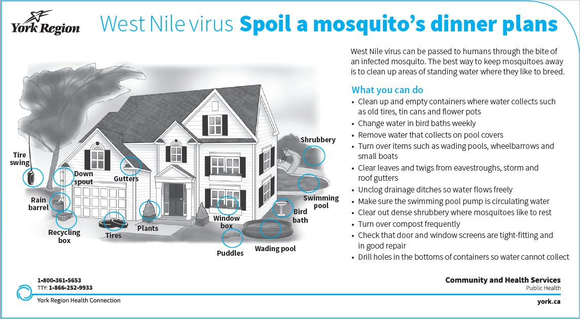West nile prevention image